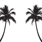 Two black silhouettes of palm trees — Stock Vector