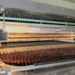 Conveyer line with many beer bottles — Stock Photo #2754665