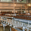 Stock Photo: Conveyer line with many beer bottles