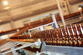Conveyer line with many beer bottles — Stock Photo