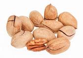 Многие орехи пекан, изолированные на белом, одной трещины — Стоковое фото