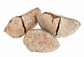Few whole shelled Brazil nuts isolated on white — Stock Photo