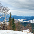Winter Carpathian mountains landscape with overcast sky - Stock Photo