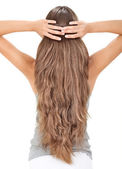 Brunette lady holding long hairs, view from back side isolated o — Stock Photo
