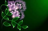 прозрачный цветы — Стоковое фото