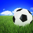 Soccer ball on green grass — Stockfoto