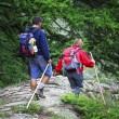 Trekking — Stock Photo #3449221