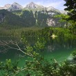 Tovel lake, italian alps — Stock Photo