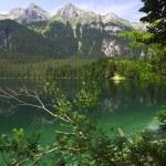 Tovel lake, italian alps — Stock Photo