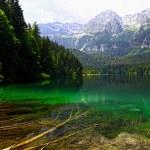Tovel lake on alps — Stock Photo