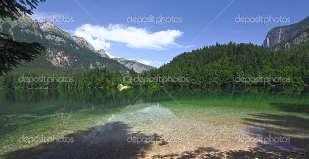 Nice view of tovel lake on italian alps  Stock Photo #3493790