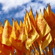 Buddhist flag — Stock Photo