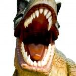 Постер, плакат: Teeth of a dinosaur