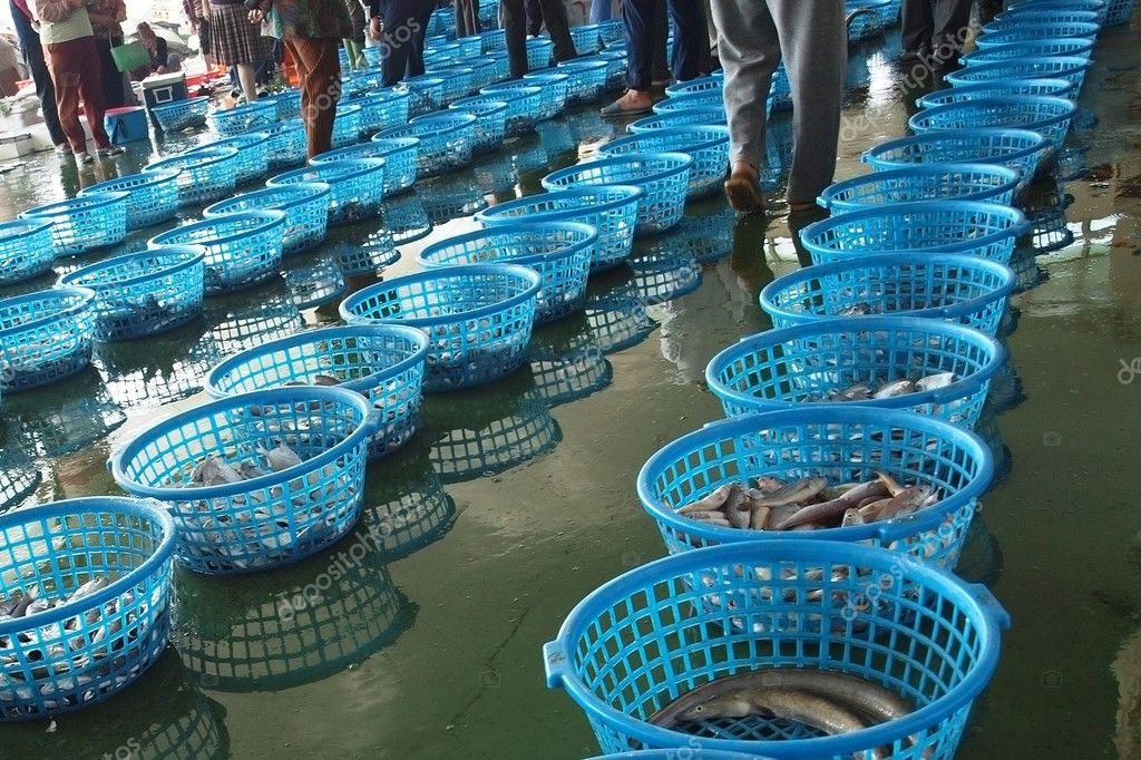 Buyers inspect the daily catch at a fish auction in Taiwan — Stock Photo #2708813