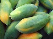 Green Papayas — Stock Photo