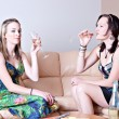 Women chatting over cheese and wine — Stock Photo