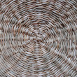 Wickerwork from dry tree — Stock Photo