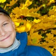 The teenager on a background of yellow sheets of a maple. Solar — Stock Photo #3913085