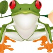 Frog with a rose - Stock Vector