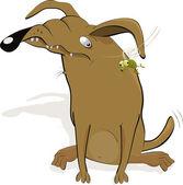 Malicious dog — Stock Vector
