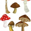 Royalty-Free Stock Vector Image: Wood mushrooms