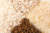 Oats, rice and buckwheat — Stock Photo