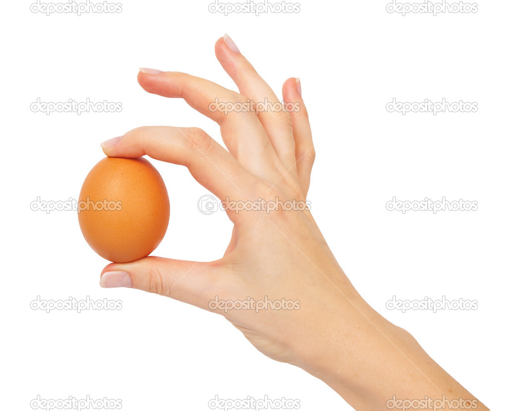 Hand holding a brown egg, isolated on white background — Stock Photo #3079357