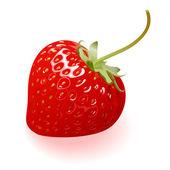 Delicious Strawberry — Stock Vector