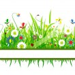 Stock Vector: Summer meadow beautiful