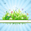 Royalty-Free Stock : Summer meadow beautiful