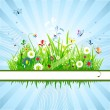 Summer meadow beautiful — Imagen vectorial