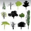 Trees collection for your design — Stockvectorbeeld