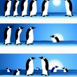 Vector de stock : Penguins, winter in Arctic