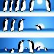Penguins, winter in Arctic — Stock Vector