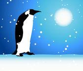 Penguin, winter in Arctic — Stock Vector