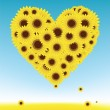 Sunflowers heart shape for your design, summer field — Stock Vector