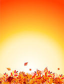 Autumn leaves background for your design — Stock Vector