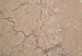 высохшая земля трещины — Стоковое фото