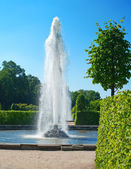 Fountain of Petergof — Stock Photo