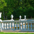 Stock Photo: Balustrade of the switched off fountain