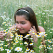 Young girl on chamomiles — Stock Photo