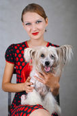 Beautiful girl and dog — Stock fotografie