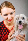 Menina bonita e cão de crista chinês — Foto Stock
