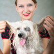 Girl and chinese crested dog — Stock Photo #3773648