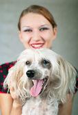 Niña y perro crestado chino en gris — Foto de Stock