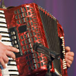 accordion — Stock Photo #3071246