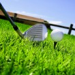 Royalty-Free Stock Photo: Ball and golf clubs