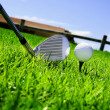 Ball and golf clubs — Stock Photo #2930252