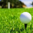 Постер, плакат: Ball and golf clubs
