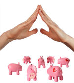 Arms and piggy bank — Stock Photo